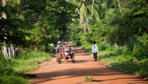 камбоджа, достопримечательности камбоджи, меконг, стынгтраенг, preah rumkel