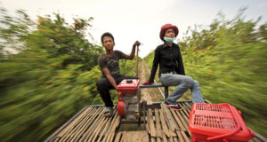 Чем заняться в провинции Баттамбанг?