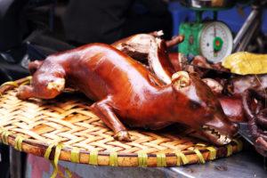 Едят ли собак в Камбодже? Индустрия смерти