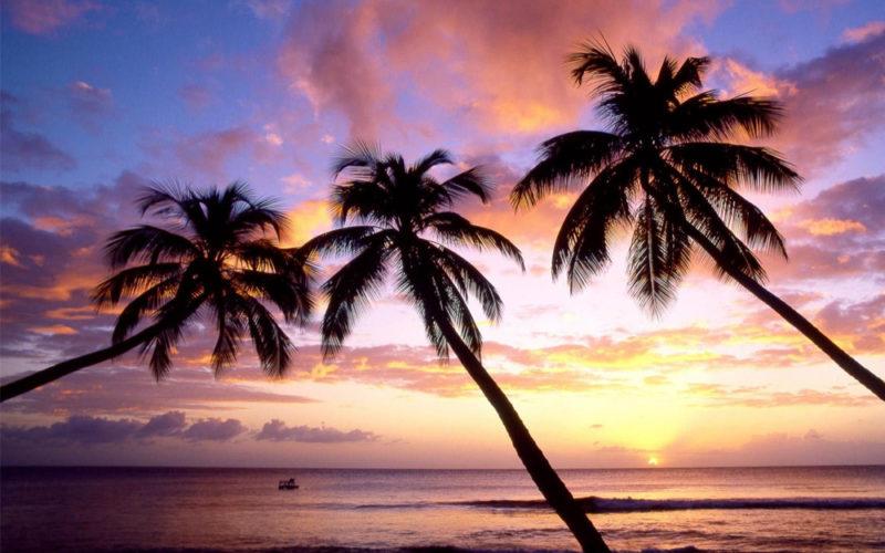 Что нужно знать об острове Кох Ронг?