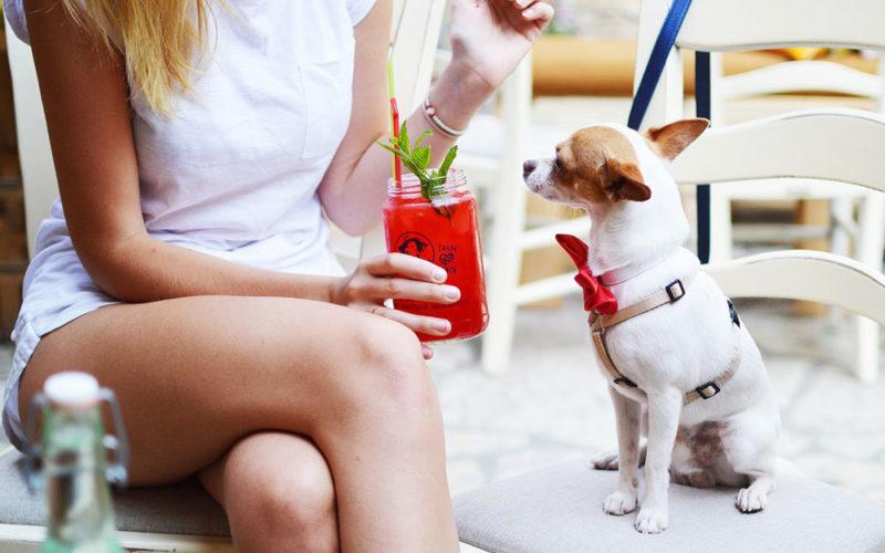 Лучшие бары пляжа Отрес в Сиануквиле