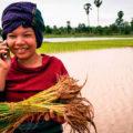 Мобильная связь в Камбодже
